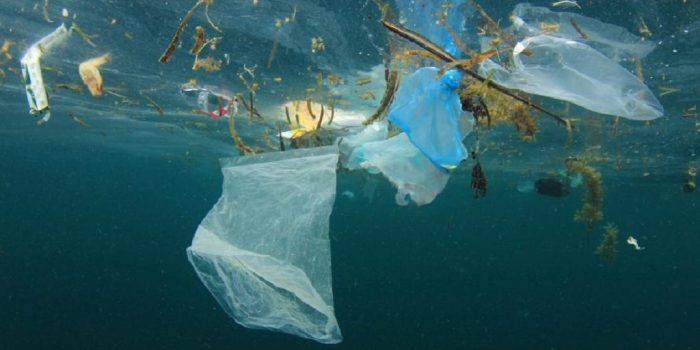 How Water Pollution Affects The Environment
