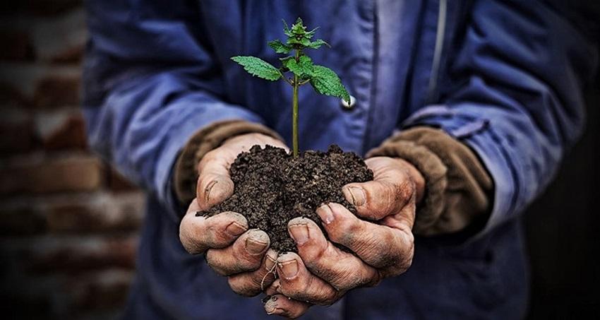 environmental education for child